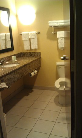 Comfort Suites Manchester: Bathroom