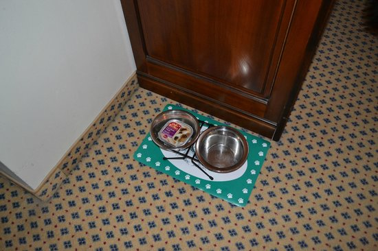 Romantik Hotel Tuchmacher: Even had dog bowls ready for us