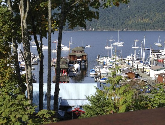 Cowichan Bay Guest Suites: View from the property