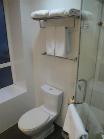 Rayfont Shanghai Nanpu Hotel: banheiro 3