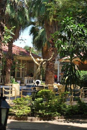 Arba Minch Tourist Hotel: Garden