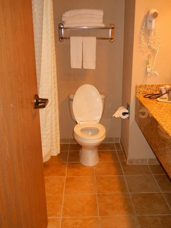 Comfort Inn : Bathroom