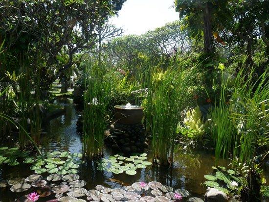 Sol Beach House Benoa Bali by Melia Hotels International: hotel garden
