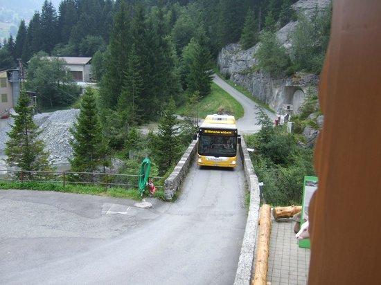Gletscherschlucht: Local Bus Service!