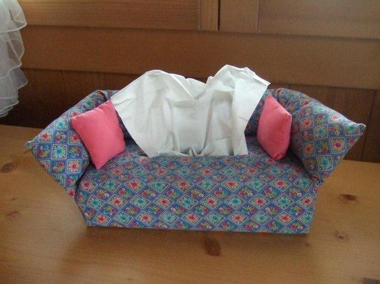 Gletscherschlucht: Lovely Box of Tissues!
