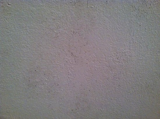 Fort Lauderdale Beach Inn: Mildew on ceiling
