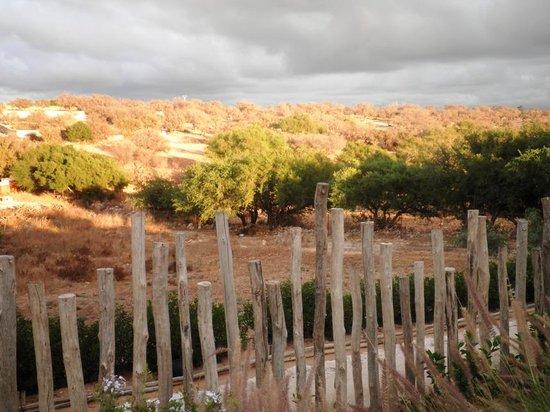 Dar Essaada: vue du bord de la piscine