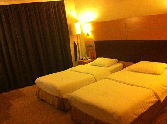 Ankara Plaza Hotel : room
