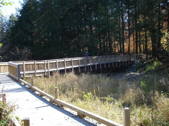 Robert Frost Wayside Trail: the bridge