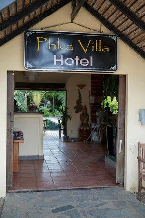 Welcome to Phka Villa!