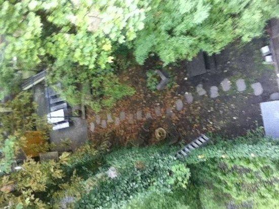 Cocomama: Garden view from the ocean room window