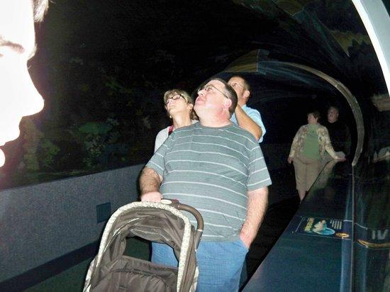 Ripley's Aquarium of the Smokies: riding through the tunnel