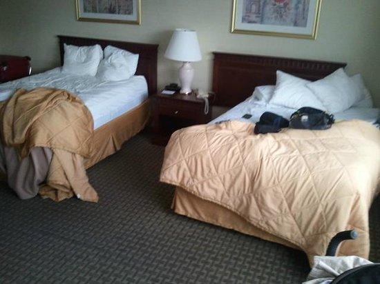 Comfort Hotel Downtown: room
