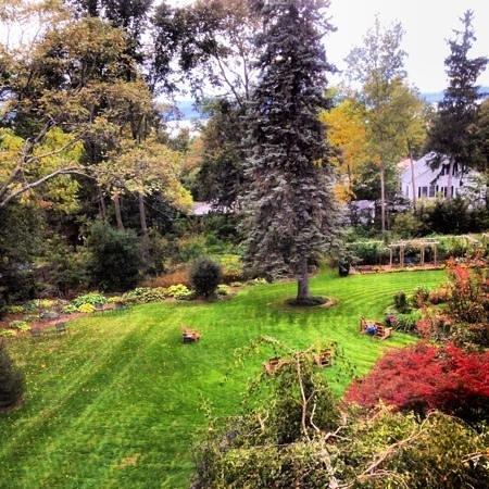 The Willard Street Inn: garden