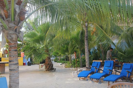 Scuba Lodge & Suites: Comfortable spot to take in the water