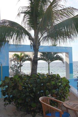 Scuba Lodge & Suites: Hotel grounds