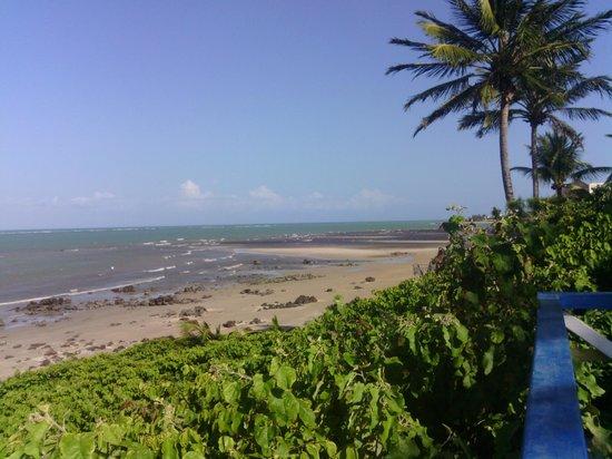 Araca Praia Flat Beira Mar: Pitangi