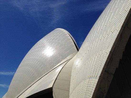 Sydney Architecture Walks : Utzon Sydney Opera House
