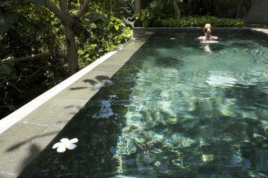 Gending Kedis Villas & Spa Estate: Flowers always fall and float in the pool