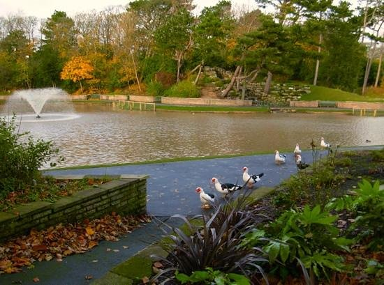 Hesketh Park's beautiful Lake in Autumn Splendour