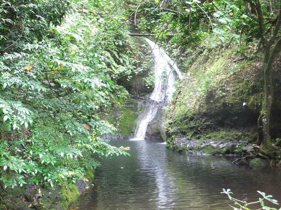 Papua ( Wigmore's) Waterfall: Oct 9th 2013