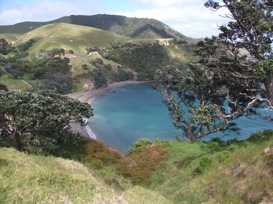Fletcher Bay Backpackers: Fletcher bay