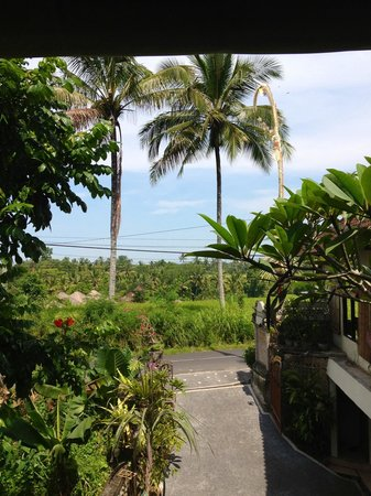 Pondok Permata Homestay : View