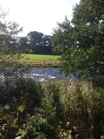 Blackaddie Country House Hotel: our view
