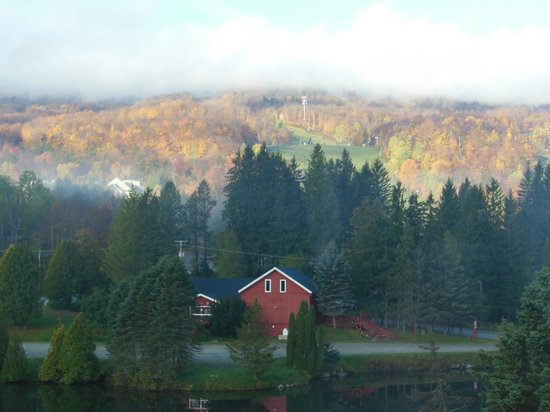 Snow Lake Lodge : view from room in the morning