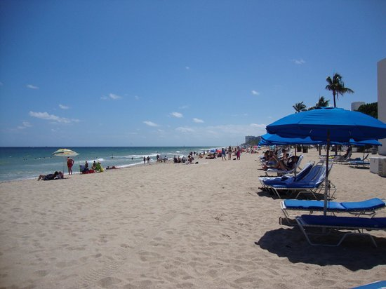 The Ritz-Carlton, Fort Lauderdale: Ritz-Carlton's beach chairs across from the hotel
