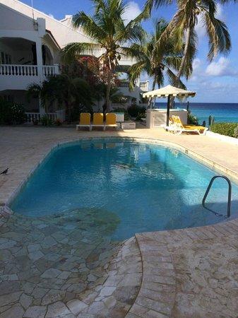 Belmar Oceanfront  Apartments: Pool