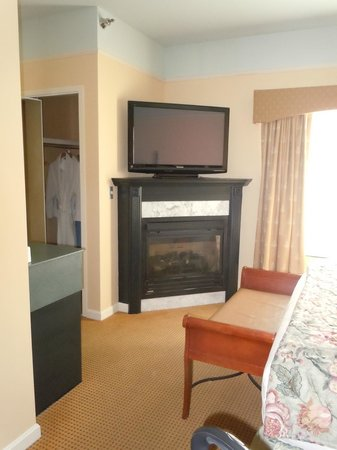 Senator Inn & Spa: Fireplace
