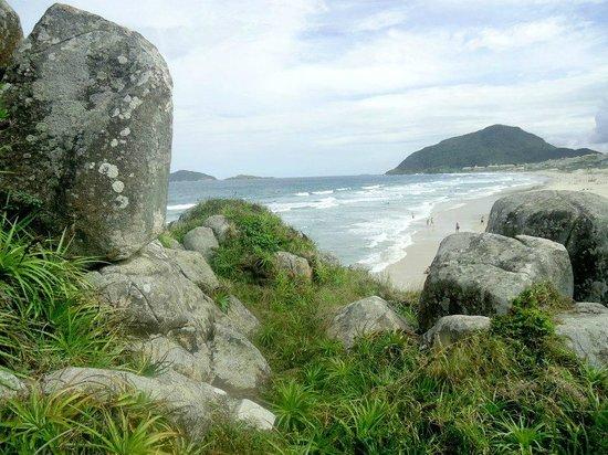 Praia do Santinho: Vista