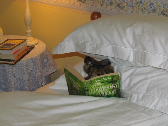 """Brockville Bed and Breakfast: Torquil """"looks after guests"""" in the Tobermory Room. He enjoys Scottish literature and lore."""
