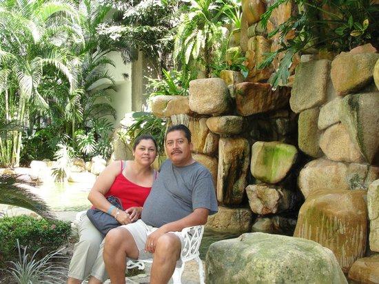 Park Royal Puerto Vallarta : cascada del hotel