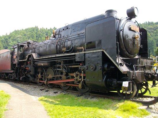 Usui Toge Railroad Cultural Village : D51