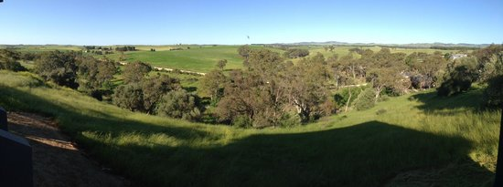 Barossa Pavilions: View from our deck