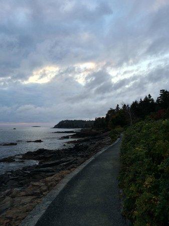 Looking down the coast along Shore Path