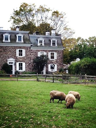 Woolverton Inn: Beautiful grounds