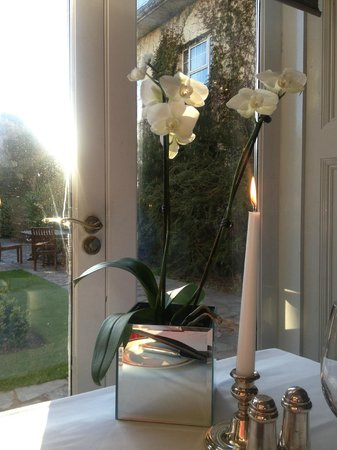 Orchids Restaurant at Hayfield Manor : Orchids at our table, the view was beautiful
