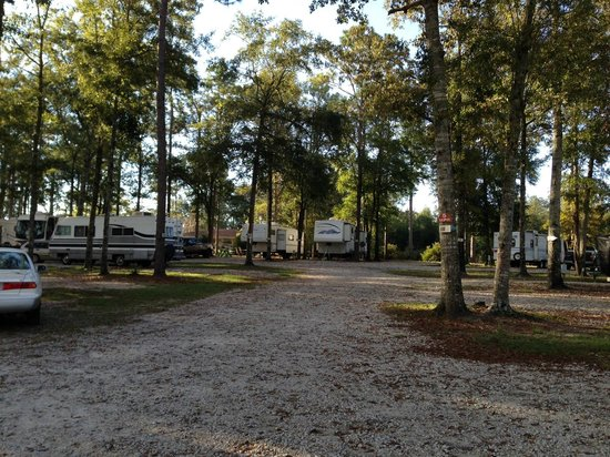 Florida Springs RV Resort and Campground : Tree-shaded sites