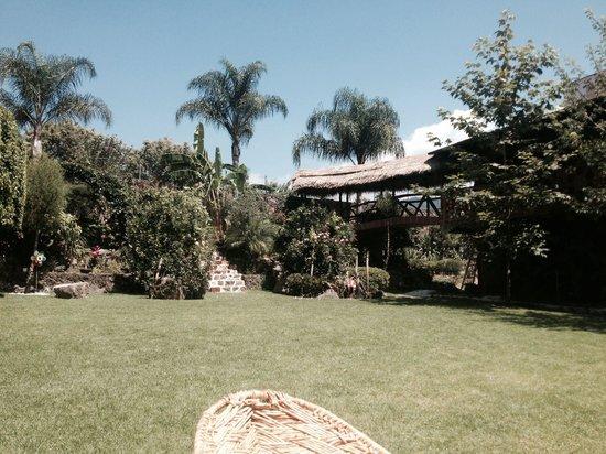 Hotel Paradise Boutique & Lounge: El jardín, un lugar para relajarte!!!