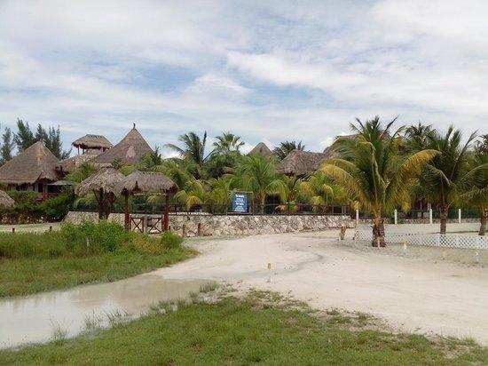 Beach Guesthouse Holbox Apartments & Suites: Increíble morada