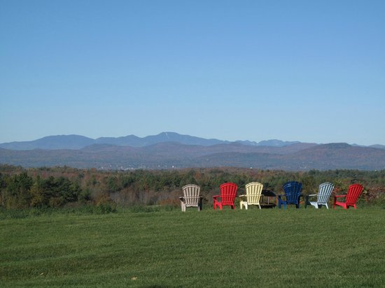 Morningside Inn: View from the sun porch