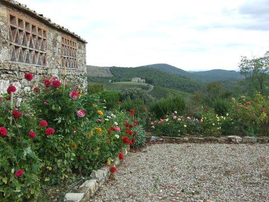 Fattoria Tregole : View of garden and hillside