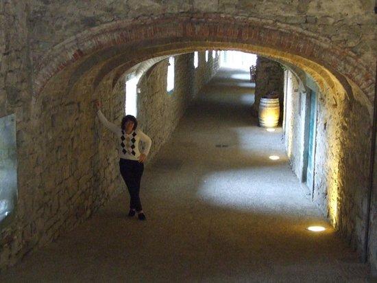 Fattoria Tregole : Medieval, under castle walkway with shops & restaurants