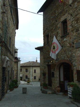 Fattoria Tregole : Charming Castelina in Chianti