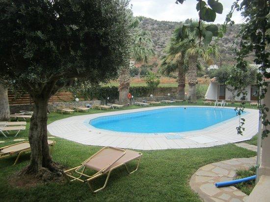 Aggelo Hotel Stalis : Бассейн отеля (1м - 1,7м)