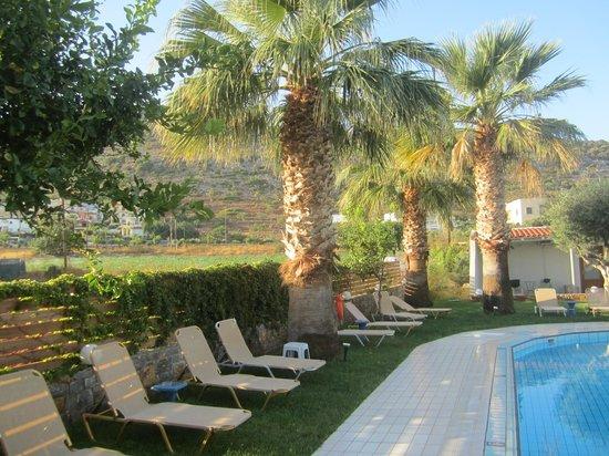 Aggelo Hotel Stalis : Рядом с бассейном