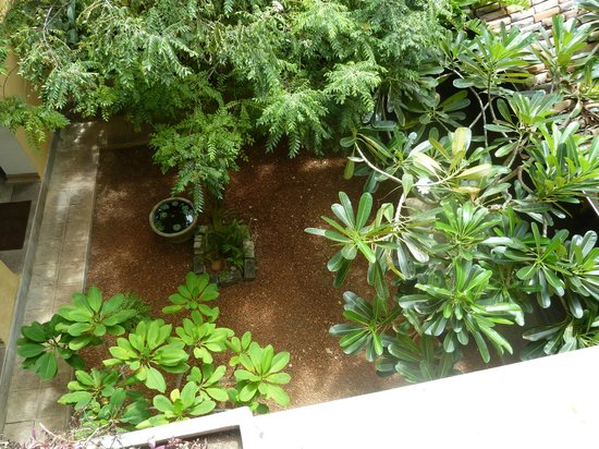 Mama's Galle Fort Roof Cafe : the courtyard